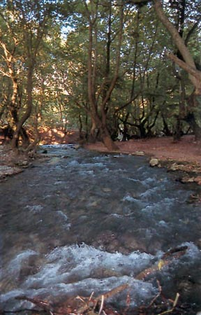 The magical springs Aroanio River village Planinterou